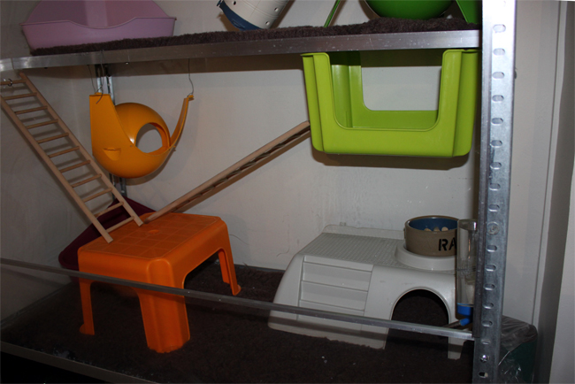 [Paris-RP] Grande cage maison en plexy - 50e Cage20112